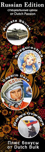 Russian Edition Gagarin Haze, Armata Skunk, Snegurochka, Belaya Gvardiya