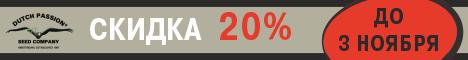 Скидка 20% на Dutch Passion до 3 ноября