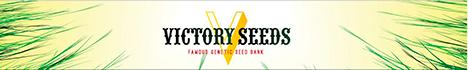 Victory Seeds - антикризисное решение !