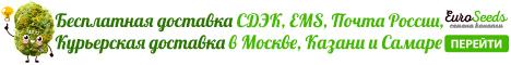 БЕСПЛАТНАЯ ДОСТАВКА СДЭК, EMS, Почтой России и курьерами DPD