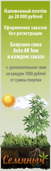 Семена Конопли Почтой Наложенным платежом до 20.000 руб.