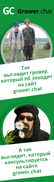 Grower.chat Хорхе