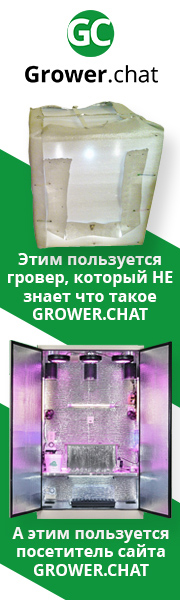 Grower.chat гроубокс