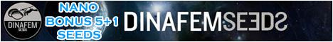 Бонусы от Dinafem только в Nano Seeds!