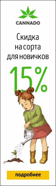 ������ 15% ��� ��������