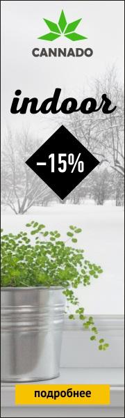 Скидка 15% на сорта для индора