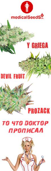 Medical Seeds - Papaseeds.net
