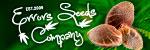 Errors-Seeds - ������ �������. ������, �����, �������!