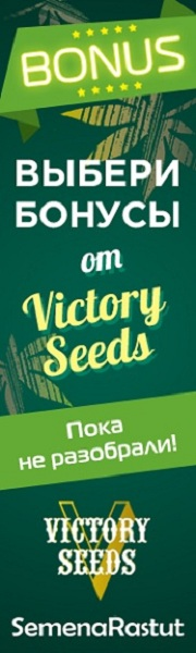 Бонусы от Victory Seeds в магазине SemenaRastut