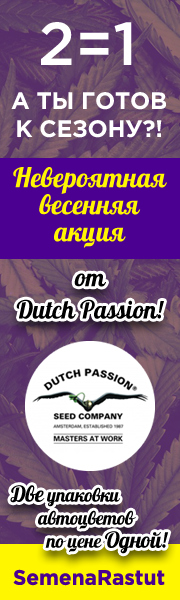АКЦИЯ Dutch Passion! 1=2