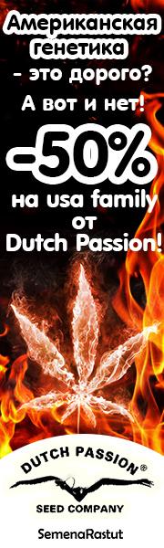 -50% на американские сорта Dutch Passion