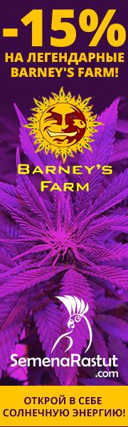 -15% на все семена Barney's farm!