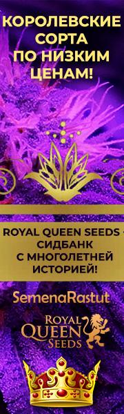 -10% на все семена Royal Queen Seeds!