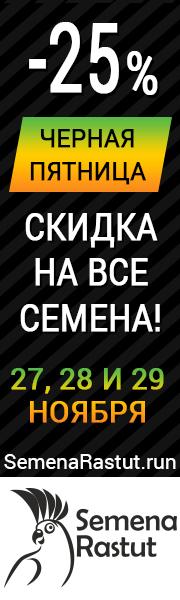 -25% НА ВСЕ СЕМЕНА!