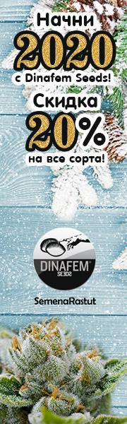 -20% на Dinafem