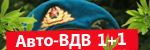1+1 За АвтоВДВ