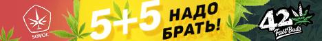 5+5 - надо брать! FastBuds