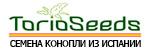 TorioSeeds.eu - семена конопли из Испании