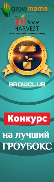 GrowClub goGrow.Club