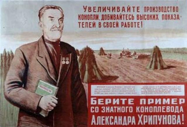 """Террористы """"Востока"""" в состоянии наркотического опьянения бесчинствуют на блокпостах в Донецке, - спикер АТО - Цензор.НЕТ 1527"""