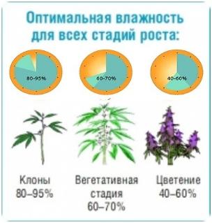 Какая температура нужна для марихуаны вредна ли конопля ли для здоровья